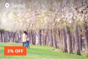 K_Island, Petite France, Garden of Morning Calm, and Gangchon Rail Bike Day Tour from Seoul