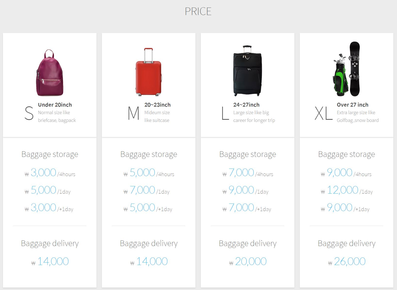 luggage service SAFEX