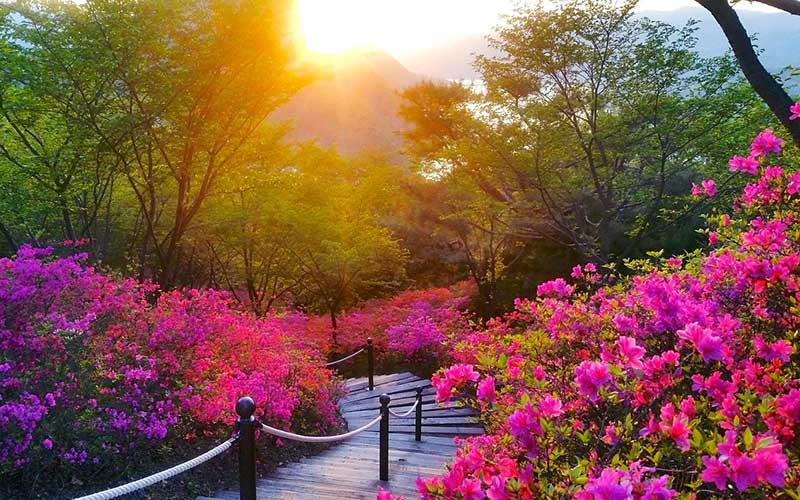 Best Mountains for Hiking in Seoul