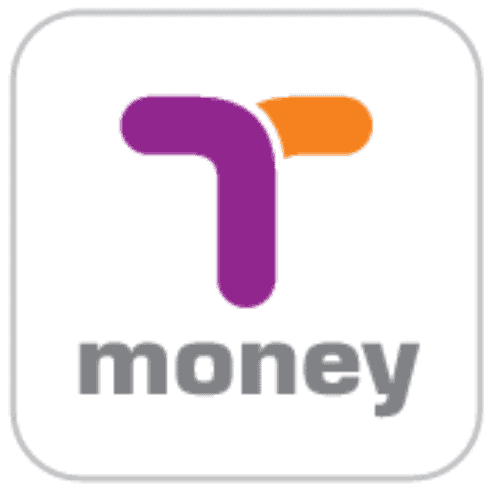 T Money Logo