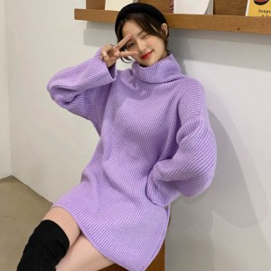 Muse Turtleneck Long Knit Sweater