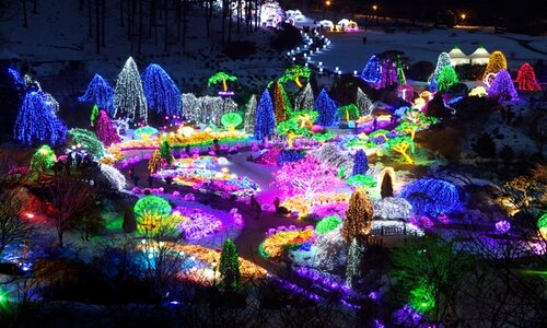 many bright, neon lights in jeju light garden with different shapes and structures