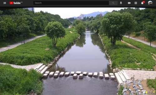 Yangjaecheon stream rolling webcam in Seoul