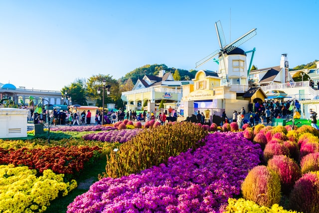 Everland Theme Park Flowers